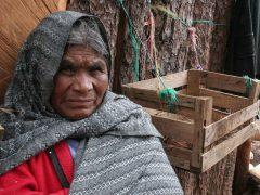 ¿Cómo afecta la pobreza la toma de decisiones?